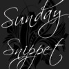 Sunday Snippet: Absolute Surrender by Jenn LeBlanc