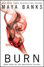 burn_215
